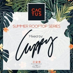 DJ Cuppy - Cactus On The Roof